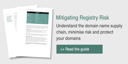 domain registry protection